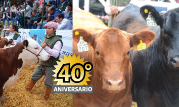 August 2017 | 40th Auction Anniversary. Gral. Belgrano.